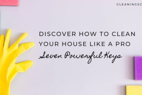 Quick Guide:  How To Clean Your House Like A Pro