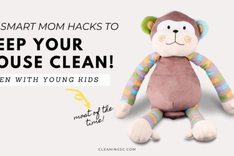 15+ Smart Mom Hacks To Keep Your House Clean With Kids
