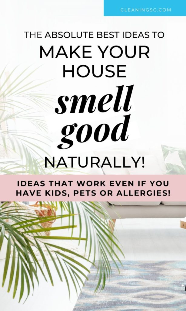make your house smell good