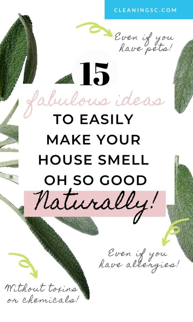 how to make your house smell amazing without chemicals