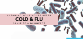 clean your house after illness