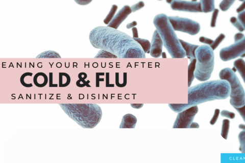 Coronavirus & Flu: How To Clean Your House After Sickness