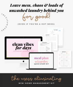 cleaning planner kit