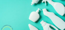 lung safe cleaning prouducts